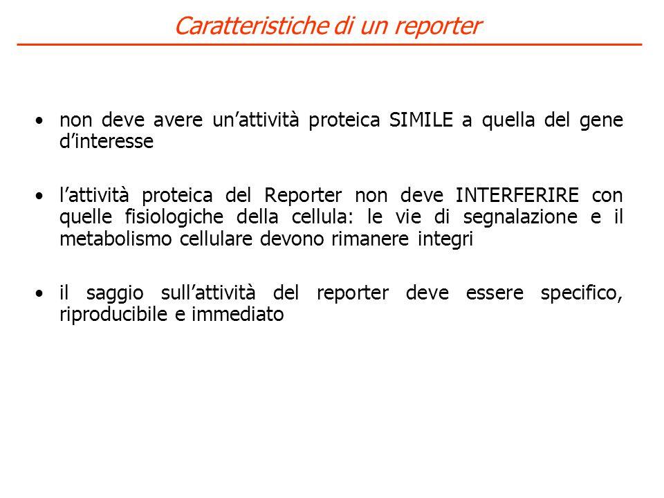 Caratteristiche di un reporter