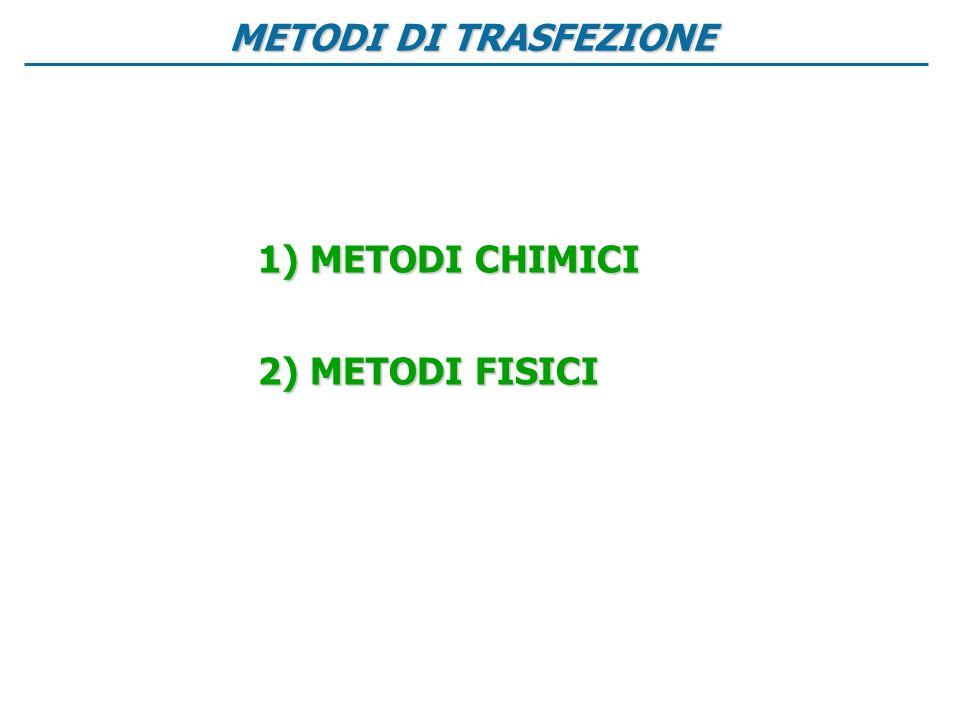 METODI DI TRASFEZIONE METODI CHIMICI METODI FISICI