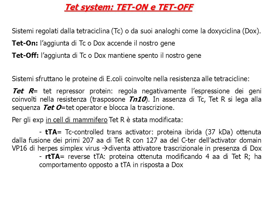 Tet system: TET-ON e TET-OFF