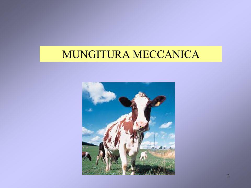 MUNGITURA MECCANICA