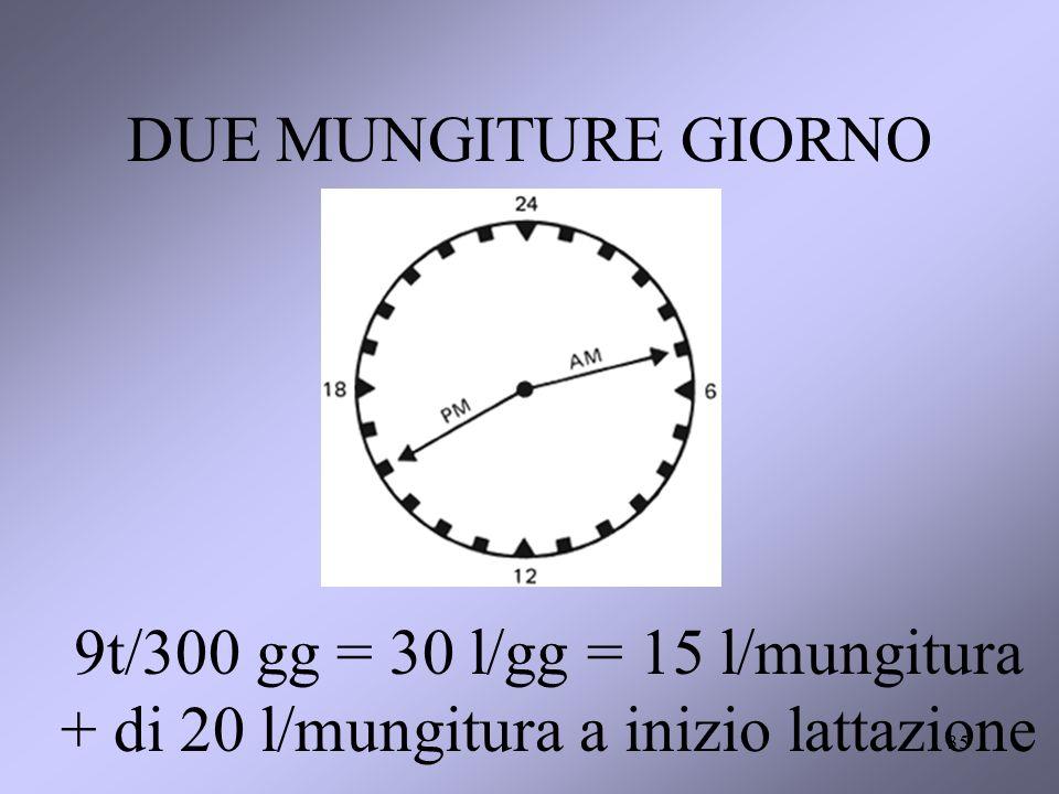 DUE MUNGITURE GIORNO 9t/300 gg = 30 l/gg = 15 l/mungitura + di 20 l/mungitura a inizio lattazione