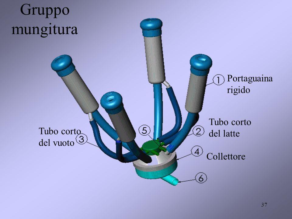 Gruppo mungitura Portaguaina rigido Tubo corto del latte