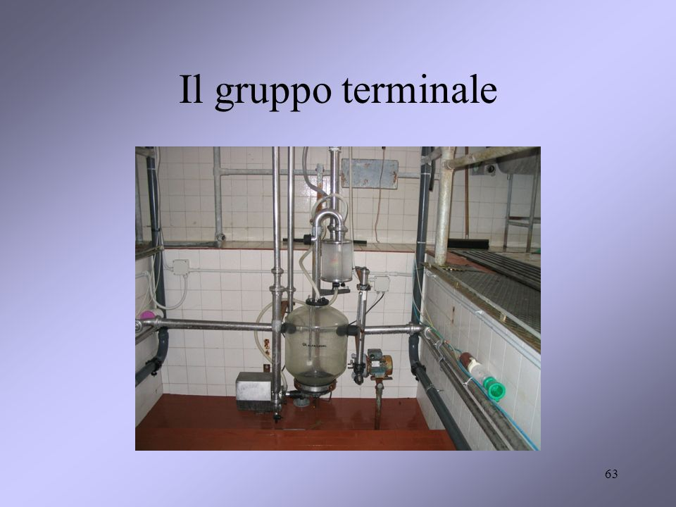 Il gruppo terminale