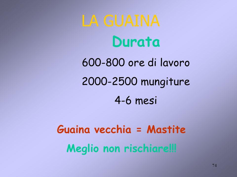 Guaina vecchia = Mastite