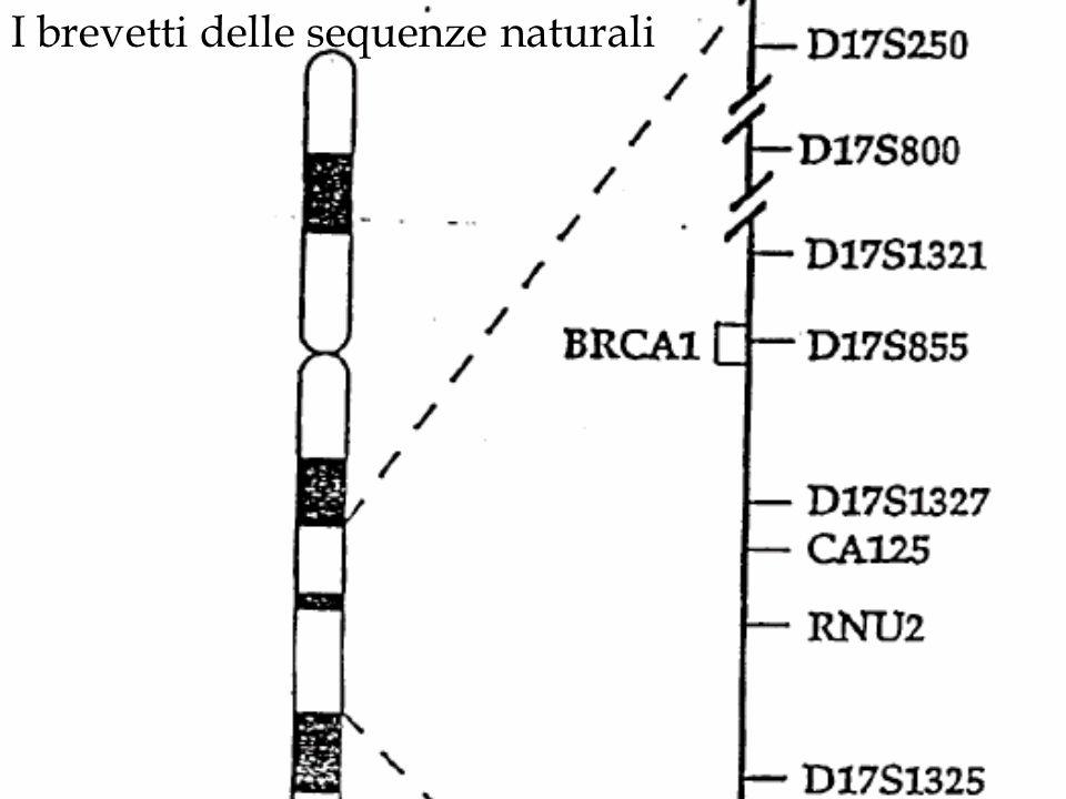 I brevetti delle sequenze naturali