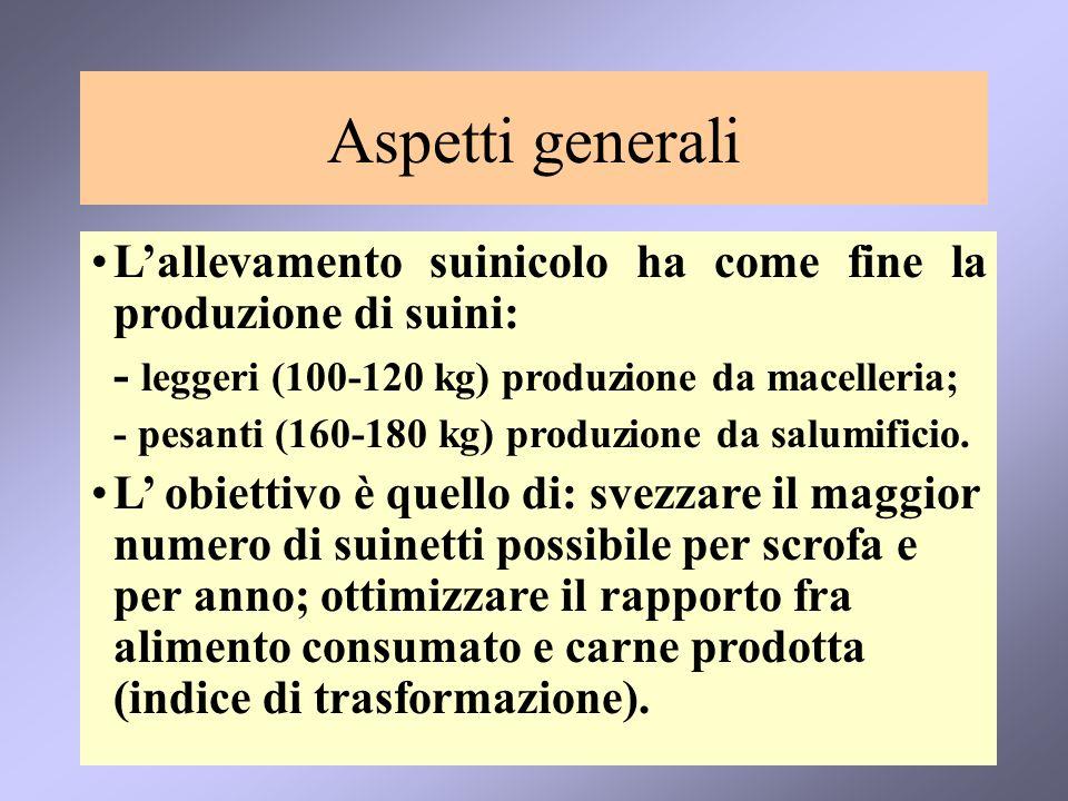 Aspetti generaliL'allevamento suinicolo ha come fine la produzione di suini: - leggeri (100-120 kg) produzione da macelleria;
