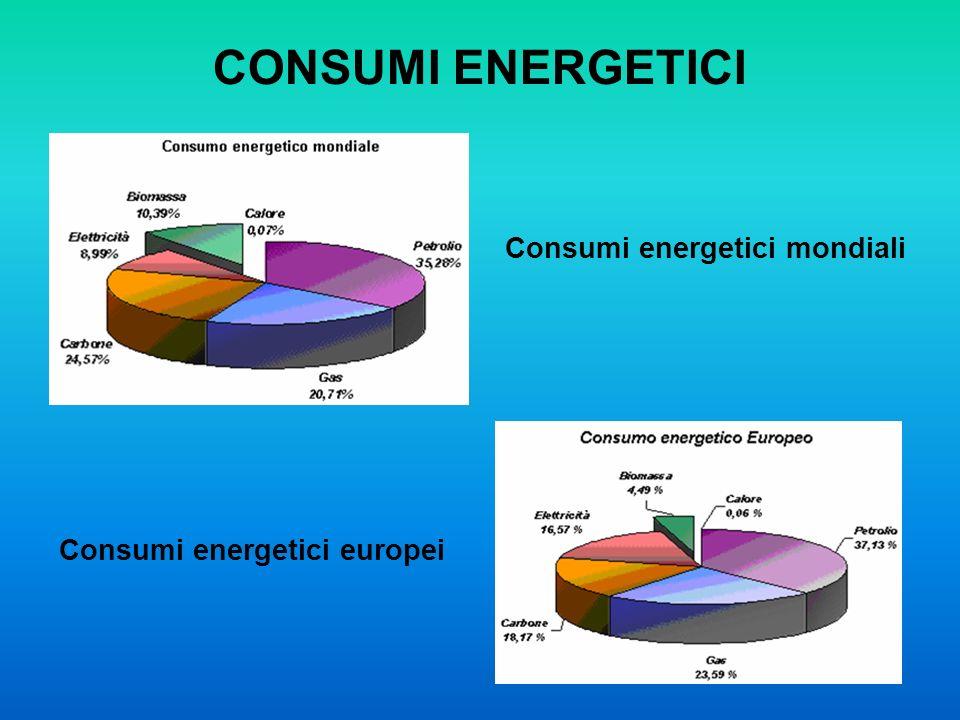 CONSUMI ENERGETICI Consumi energetici mondiali