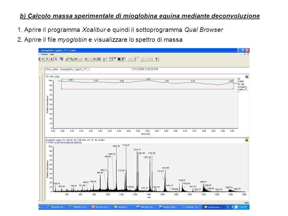 b) Calcolo massa sperimentale di mioglobina equina mediante deconvoluzione