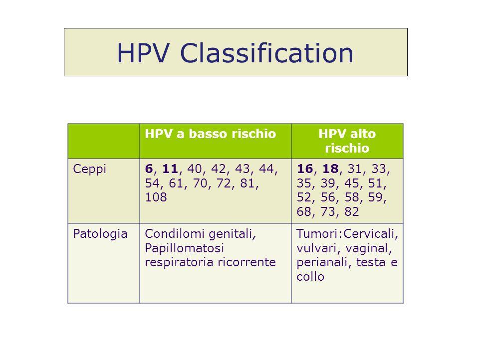 HPV Classification HPV a basso rischio HPV alto rischio Ceppi