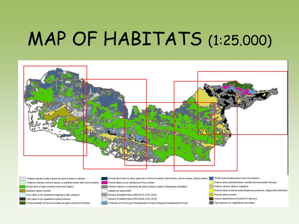 MAP OF HABITATS (1:25.000)