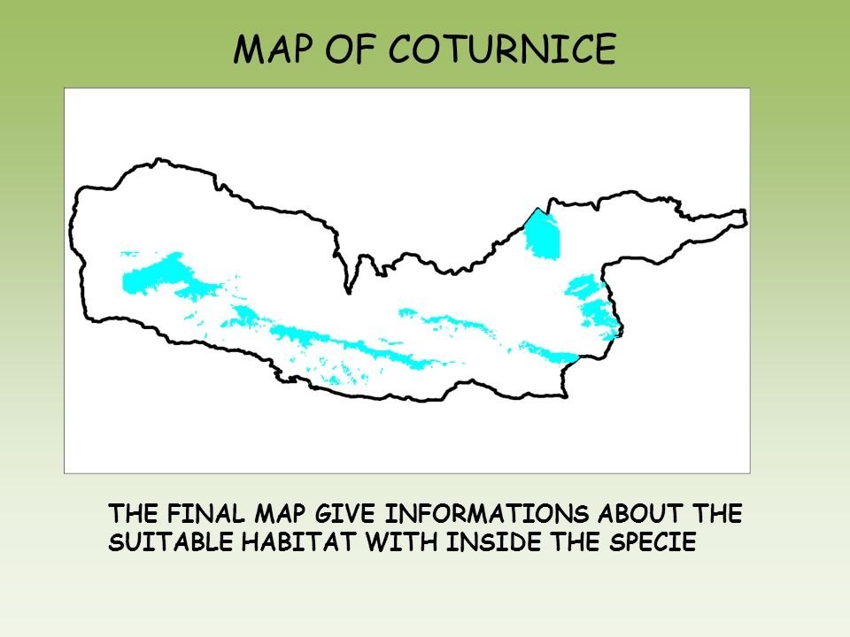 MAP OF COTURNICE THE FINAL MAP GIVE INFORMATIONS ABOUT THE SUITABLE HABITAT WITH INSIDE THE SPECIE