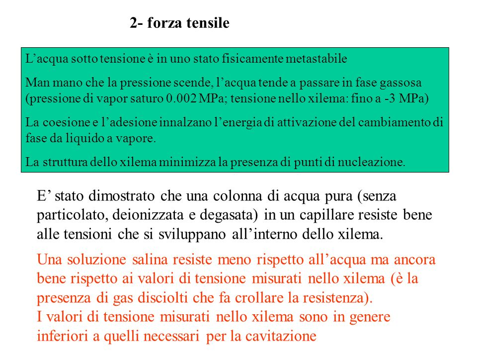 2- forza tensile L'acqua sotto tensione è in uno stato fisicamente metastabile.