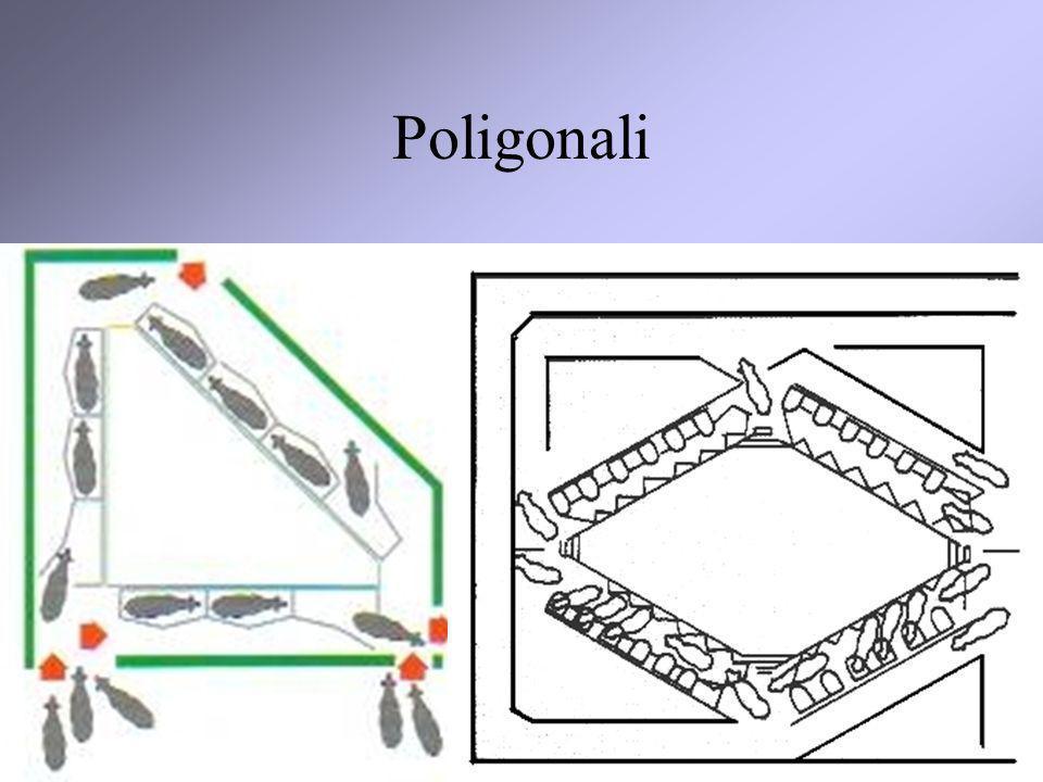 Poligonali