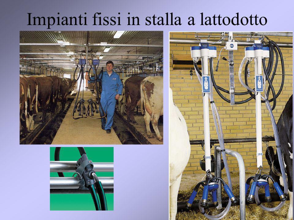 Impianti fissi in stalla a lattodotto