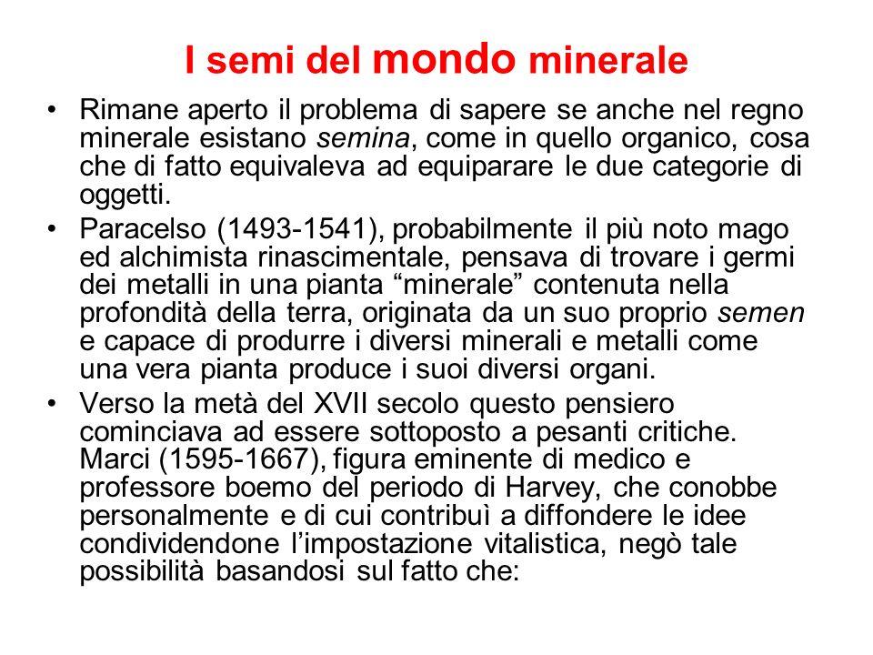 I semi del mondo minerale