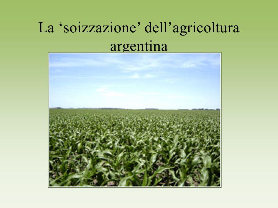 La 'soizzazione' dell'agricoltura argentina