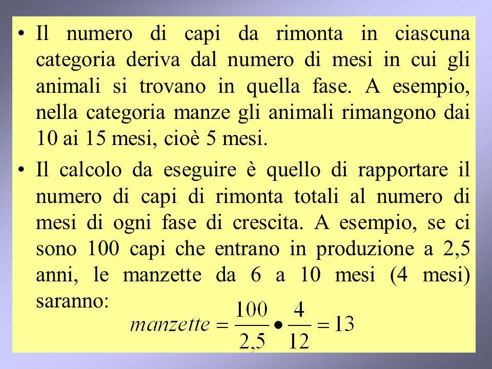 Il numero di capi da rimonta in ciascuna categoria deriva dal numero di mesi in cui gli animali si trovano in quella fase. A esempio, nella categoria manze gli animali rimangono dai 10 ai 15 mesi, cioè 5 mesi.
