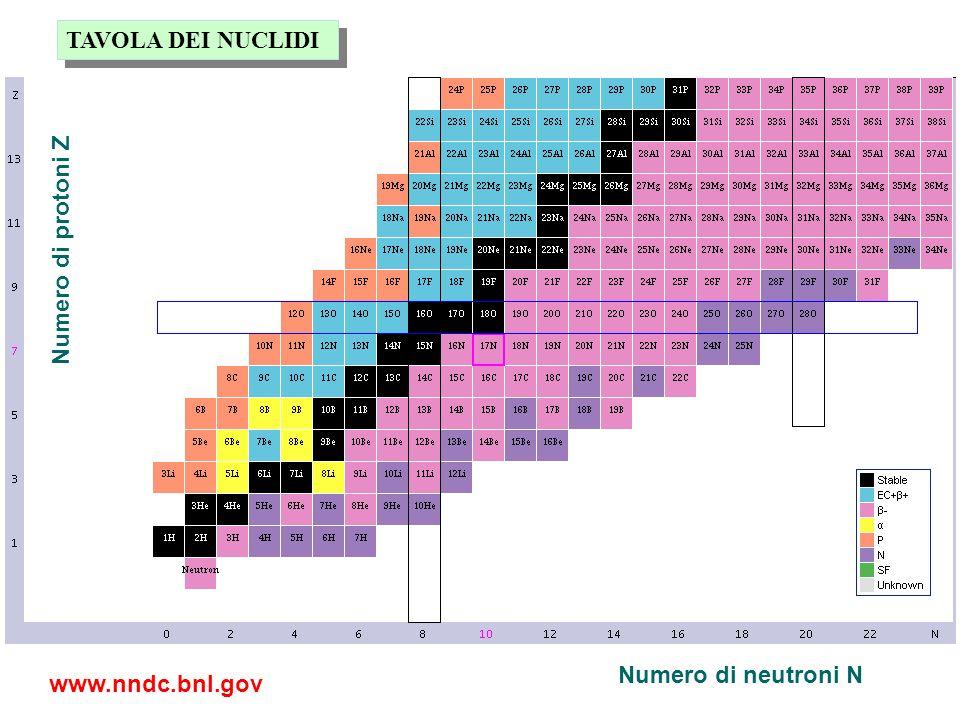 TAVOLA DEI NUCLIDI Numero di protoni Z Numero di neutroni N www.nndc.bnl.gov