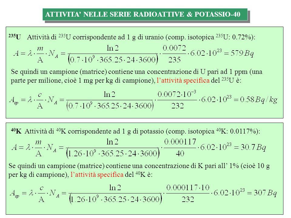 ATTIVITA' NELLE SERIE RADIOATTIVE & POTASSIO-40