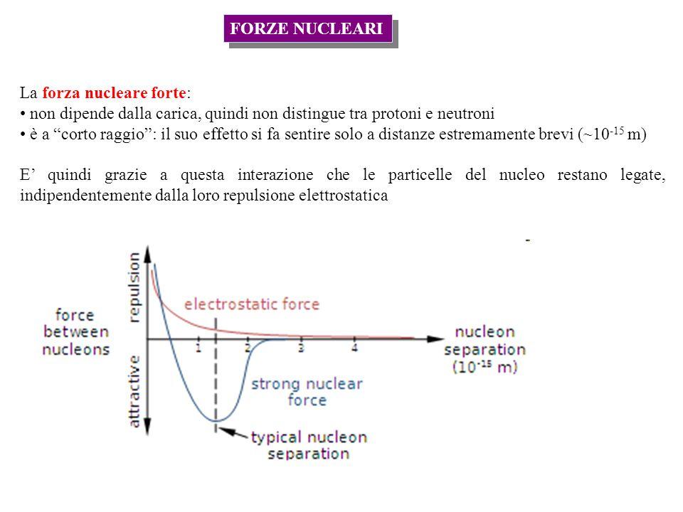 FORZE NUCLEARI La forza nucleare forte: non dipende dalla carica, quindi non distingue tra protoni e neutroni.