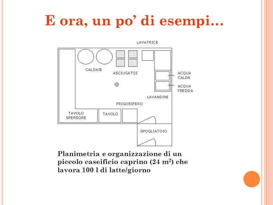 E ora, un po' di esempi…Planimetria e organizzazione di un piccolo caseificio caprino (24 m2) che lavora 100 l di latte/giorno.
