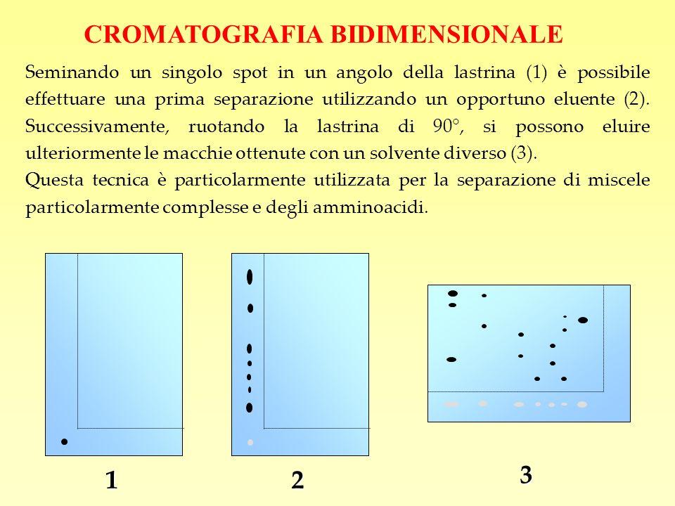 CROMATOGRAFIA BIDIMENSIONALE