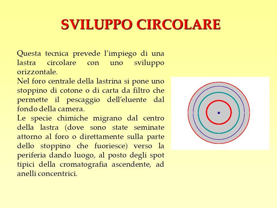 SVILUPPO CIRCOLARE Questa tecnica prevede l'impiego di una lastra circolare con uno sviluppo orizzontale.