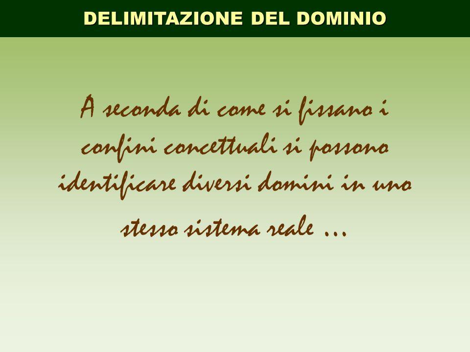 DELIMITAZIONE DEL DOMINIO