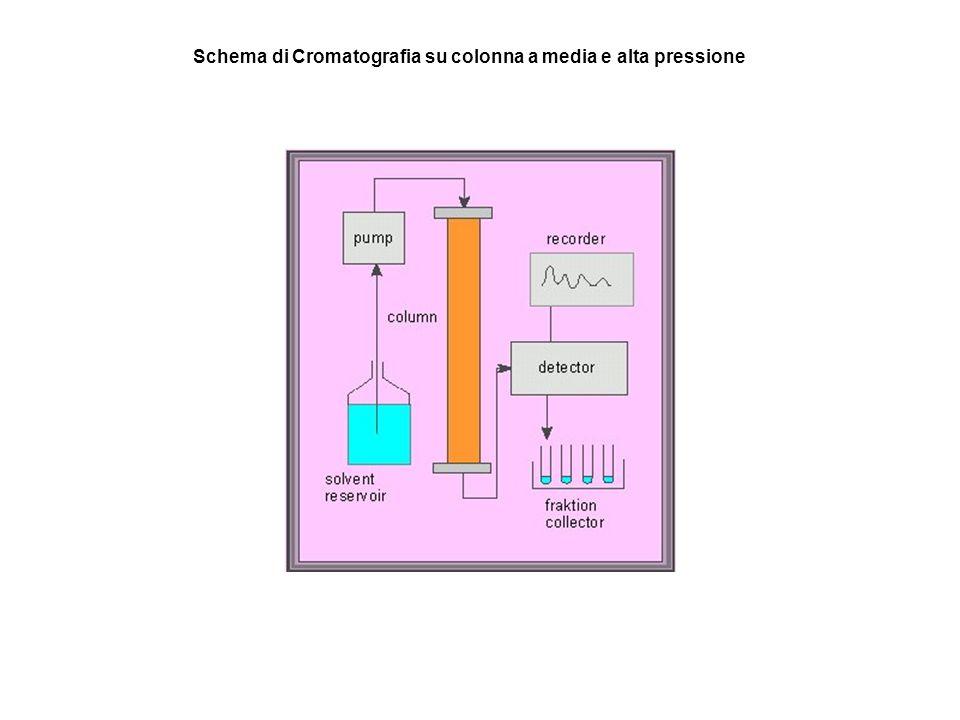Schema di Cromatografia su colonna a media e alta pressione