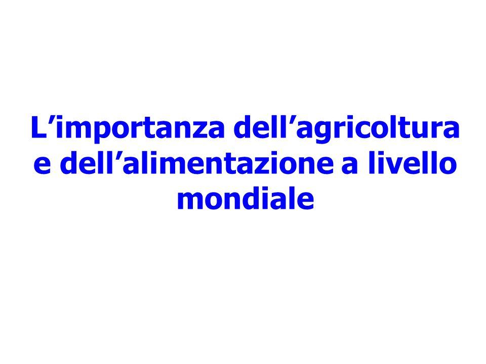 L'importanza dell'agricoltura e dell'alimentazione a livello mondiale