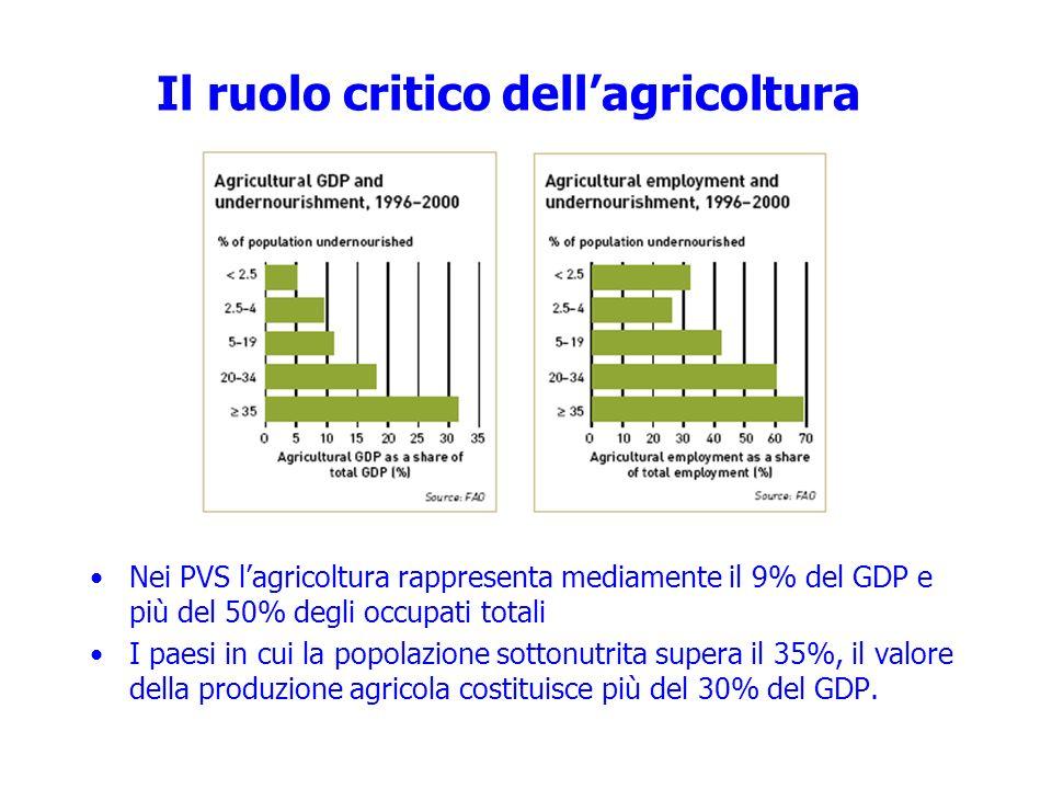 Il ruolo critico dell'agricoltura