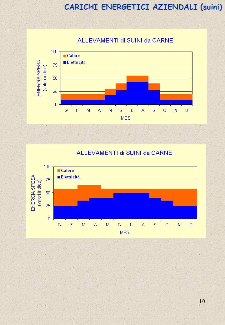 CARICHI ENERGETICI AZIENDALI (suini)