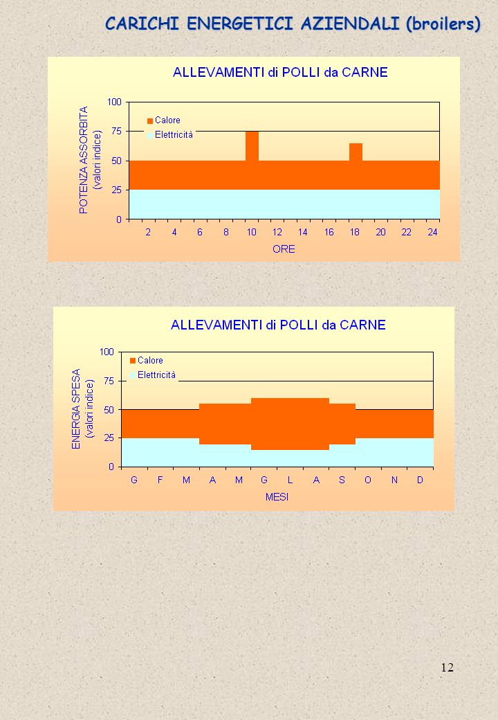 CARICHI ENERGETICI AZIENDALI (broilers)