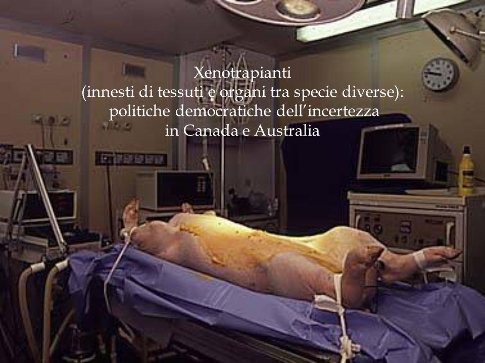 Xenotrapianti (innesti di tessuti e organi tra specie diverse): politiche democratiche dell'incertezza in Canada e Australia