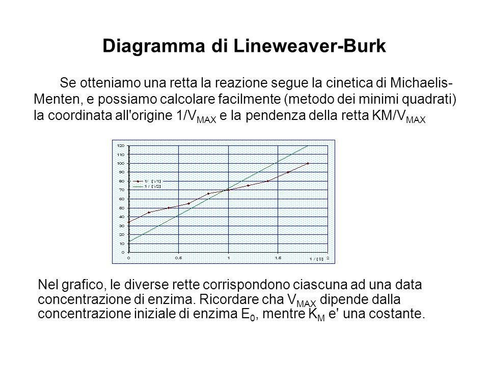 Diagramma di Lineweaver-Burk