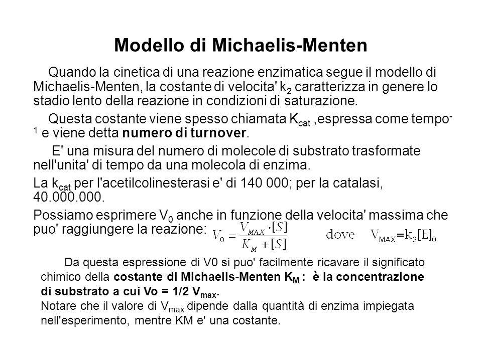 Modello di Michaelis-Menten