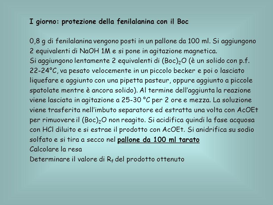 I giorno: protezione della fenilalanina con il Boc
