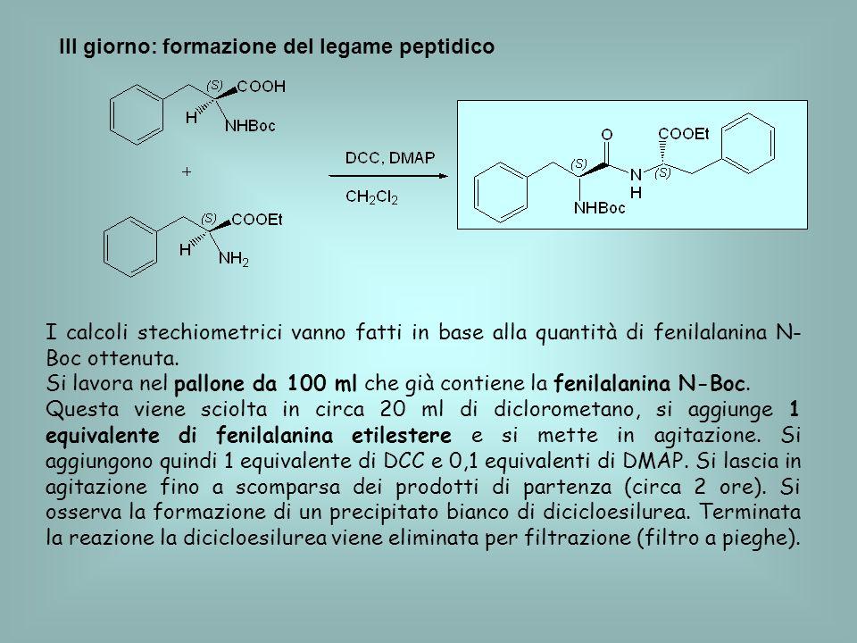 III giorno: formazione del legame peptidico