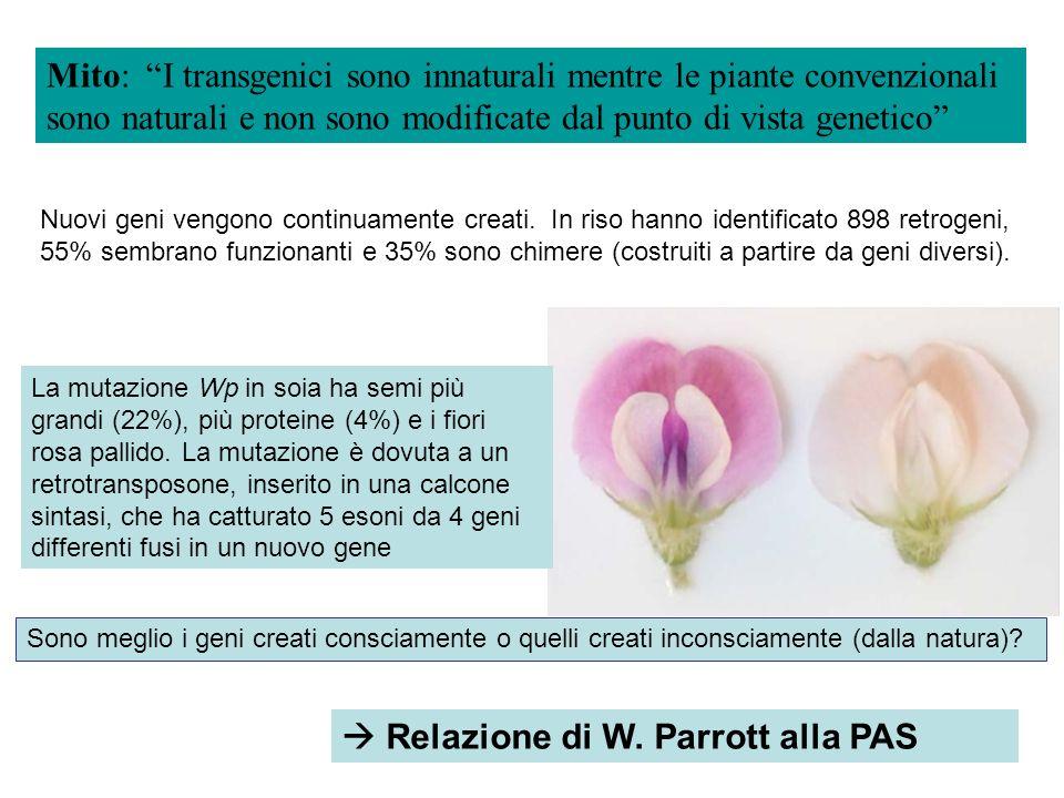  Relazione di W. Parrott alla PAS