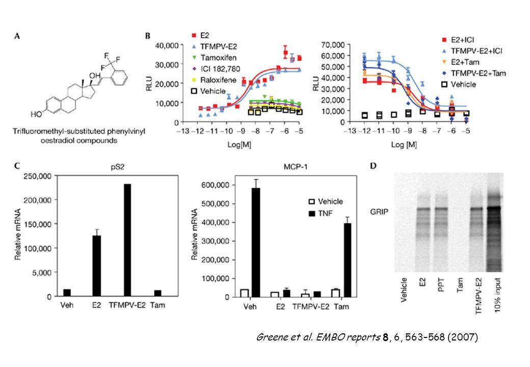Greene et al. EMBO reports 8, 6, 563–568 (2007)