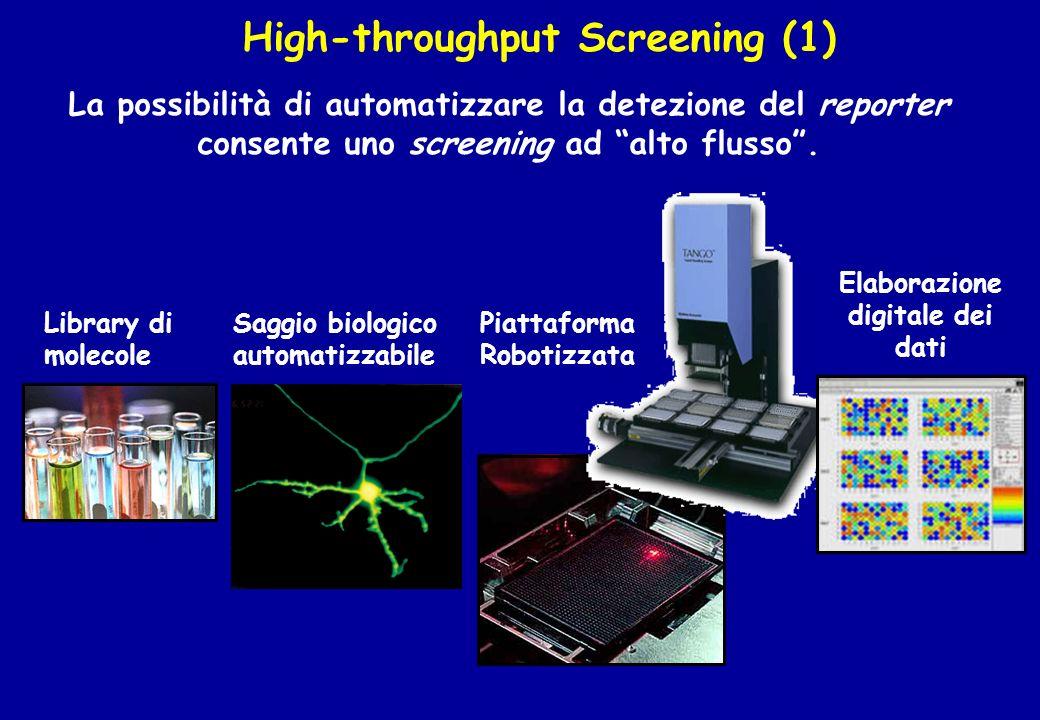 High-throughput Screening (1) Elaborazione digitale dei dati