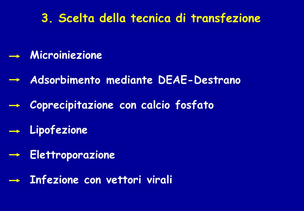 3. Scelta della tecnica di transfezione