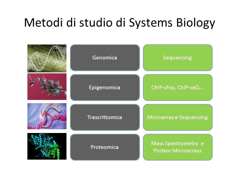 Metodi di studio di Systems Biology