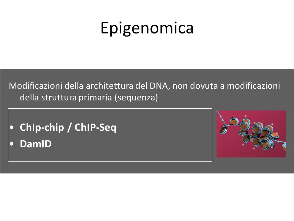 Epigenomica ChIp-chip / ChIP-Seq DamID
