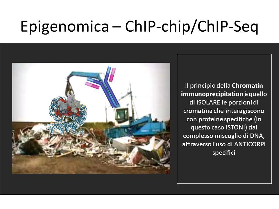 Epigenomica – ChIP-chip/ChIP-Seq