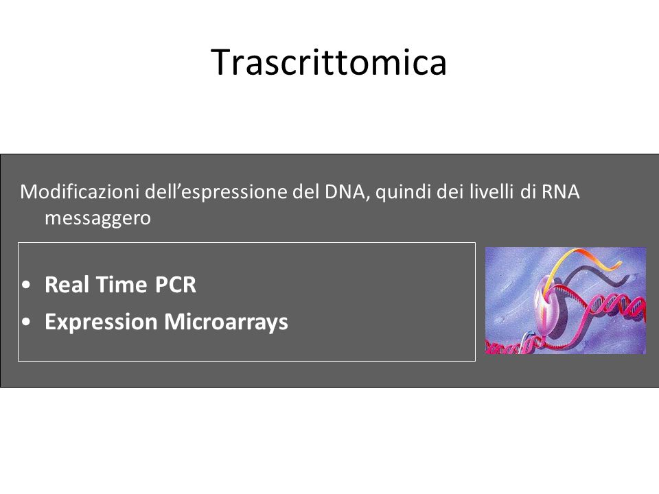 Trascrittomica Real Time PCR Expression Microarrays