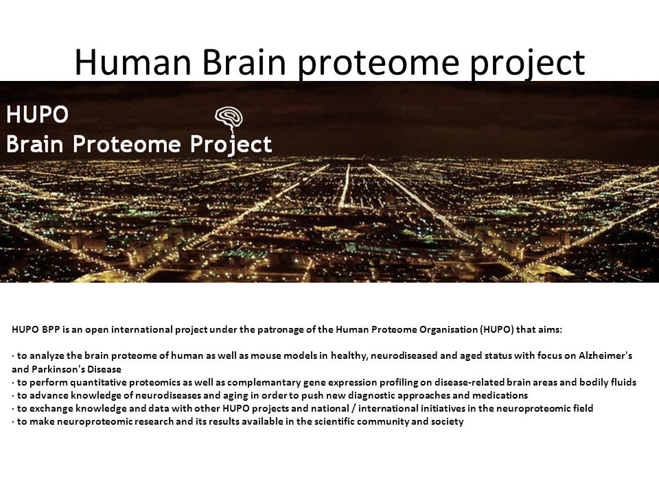 Human Brain proteome project
