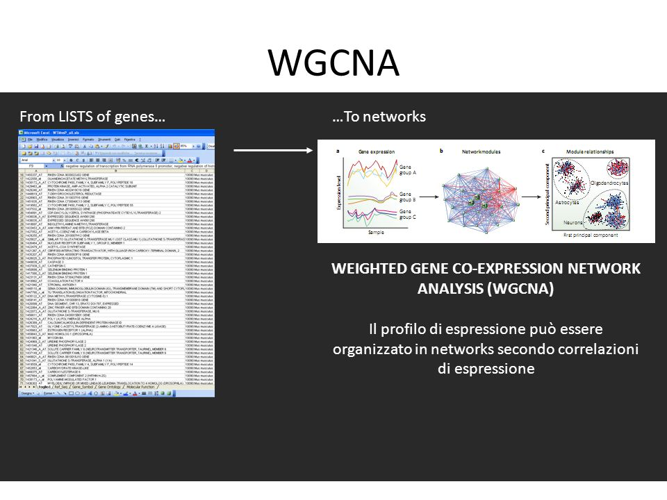 WEIGHTED GENE CO-EXPRESSION NETWORK ANALYSIS (WGCNA)