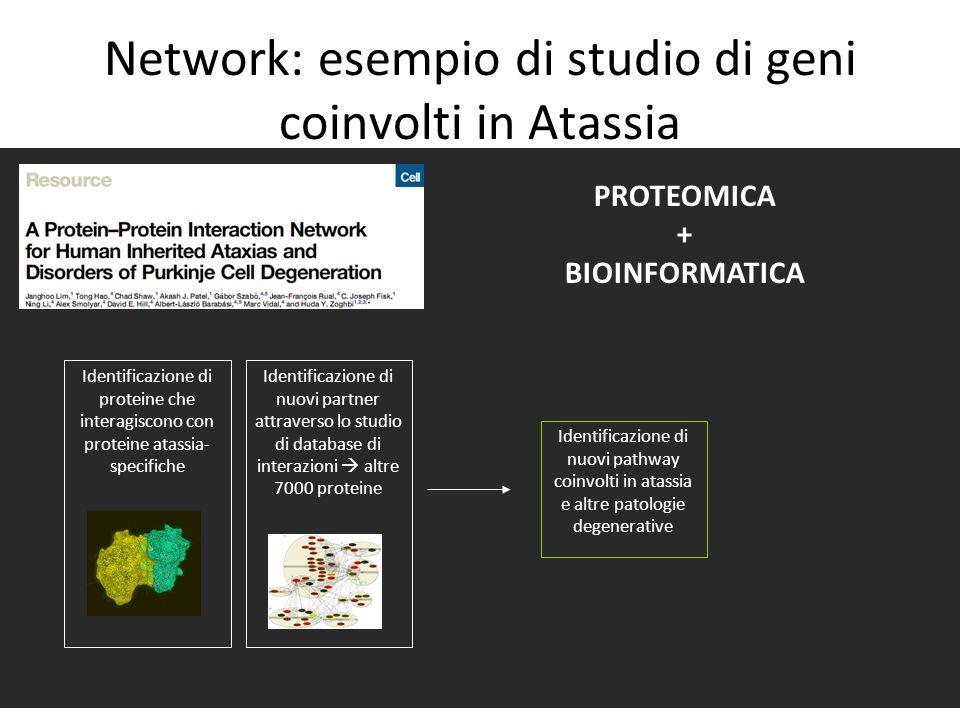 Network: esempio di studio di geni coinvolti in Atassia