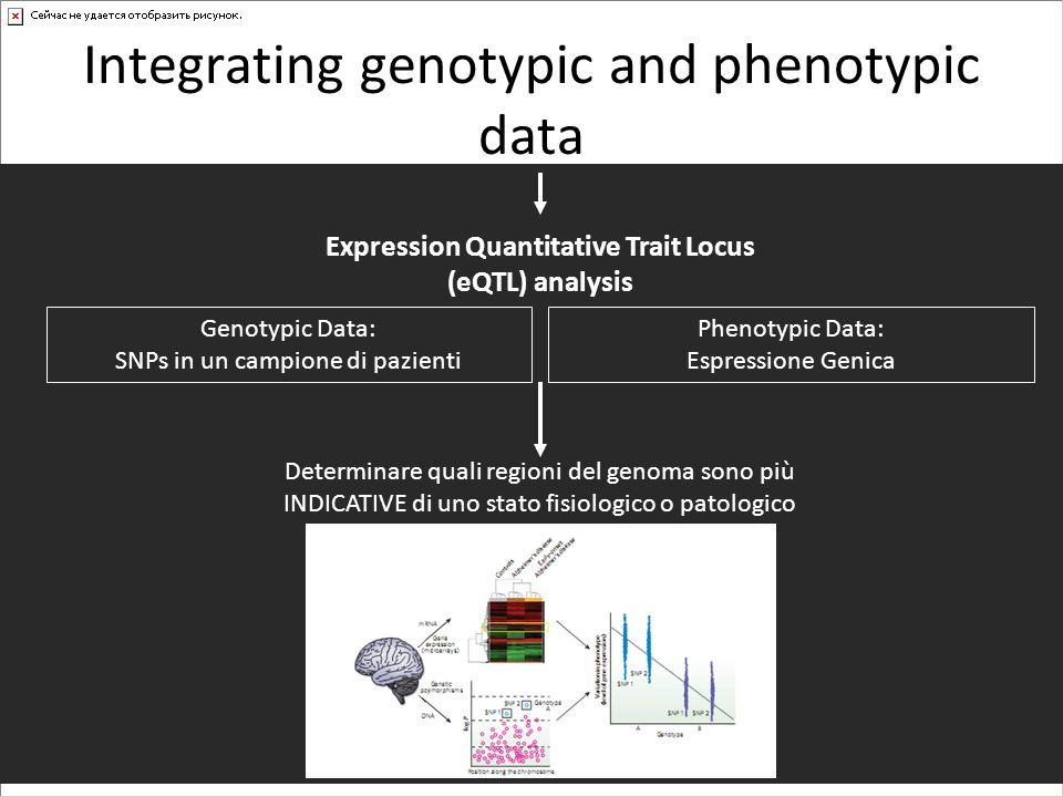Integrating genotypic and phenotypic data